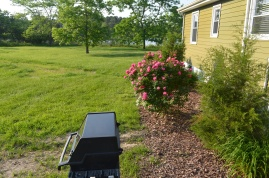 Cottage Memorial Day May 28 2016 085